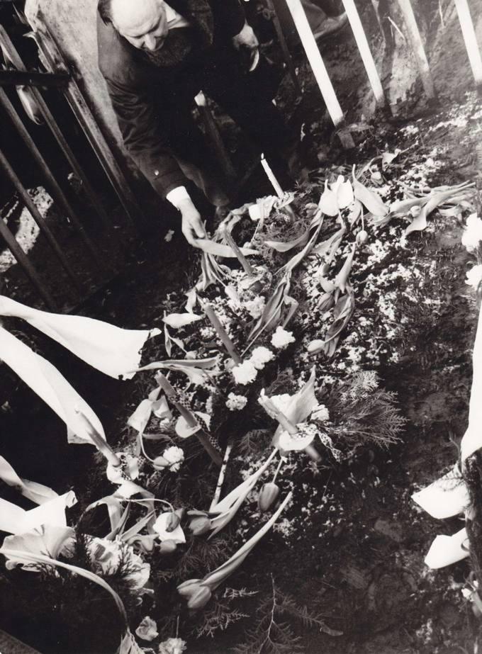 Dedamos gėlės ant savanorių kapų