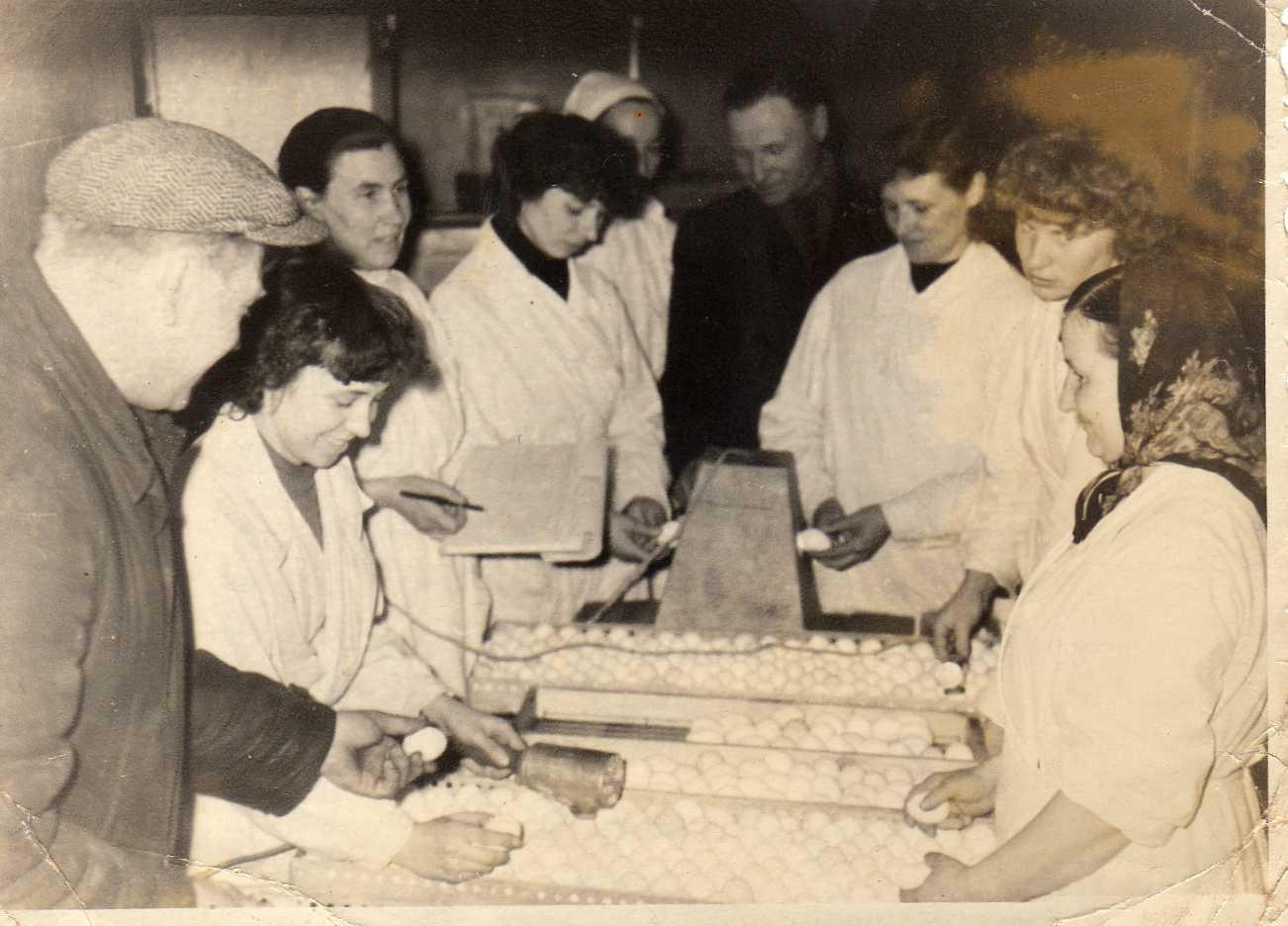 Profesoriaus, agronomo Petro Vasinausko brolis Jonas Vasinauskas (šeštas iš kairės) Inkubatorinės paukštininkystės stoties mechanikas