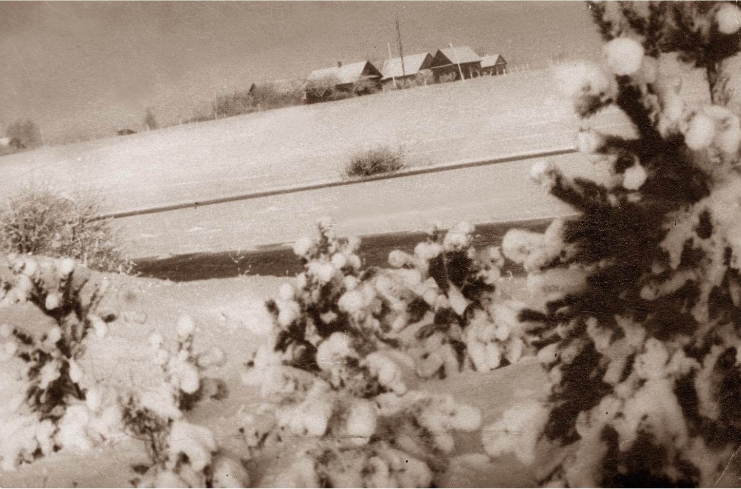 Profesoriaus, agronomo Petro Vasinausko brolio Jono Vasinausko sodyba. 1945 m.