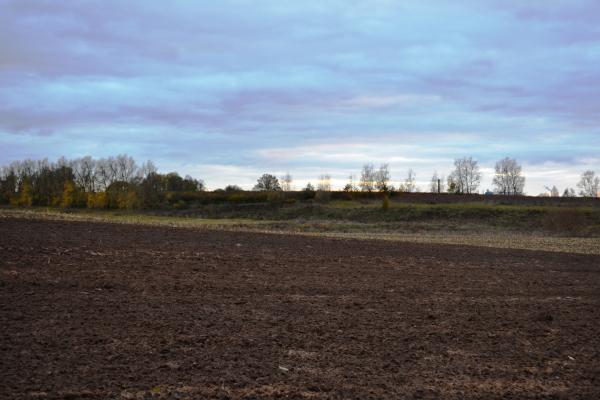 Papyvesių senkapis ir senovės gyvenvietė