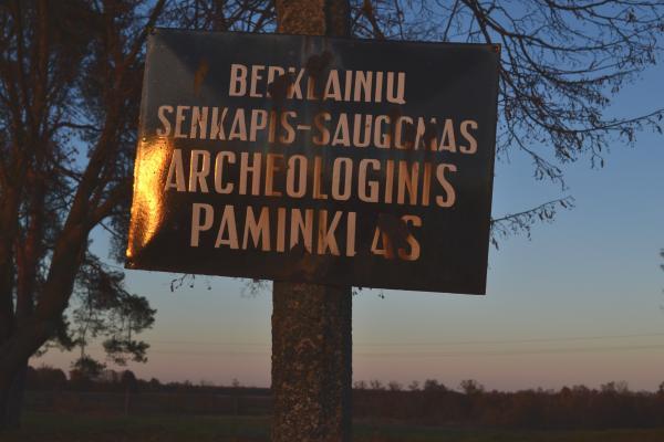 Berklainių pilkapynas ir kapinynas