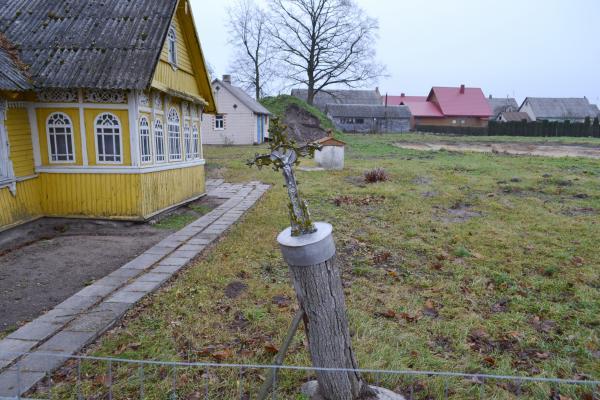 Kryžius Stanislovo Gegecko sodyboje, Pamažupiuose