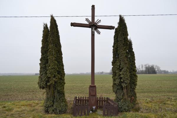 Kryžius jaunimui Ruškelių kaime