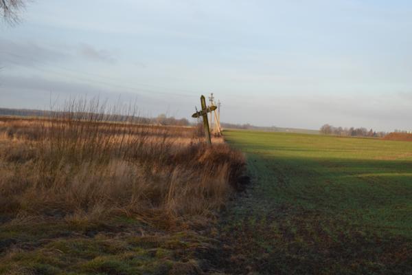 Kryžius Vainekonių kaime