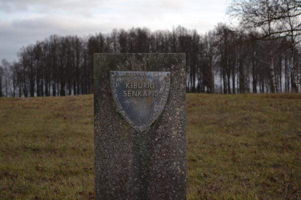 Kyburių kapinynas