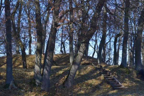 Ąžuolpamūšės piliakalnis
