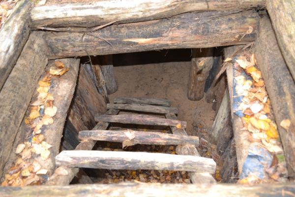 Bunkeris Margiuose, Žaliojoje girioje