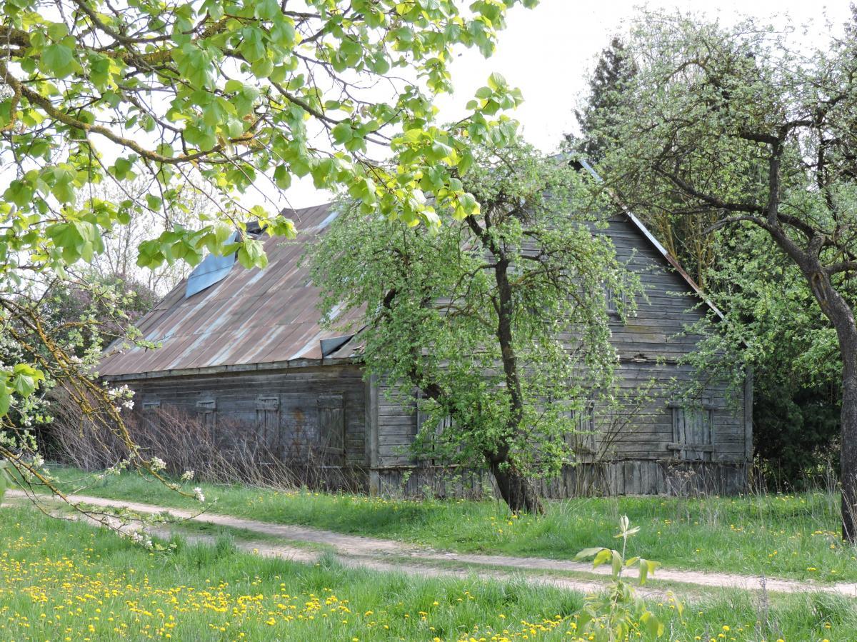 Profesoriaus agronomo Juozo Tonkūno tėviškė Stačiūnų kaime, Pasvalio apylinkių seniūnijoje