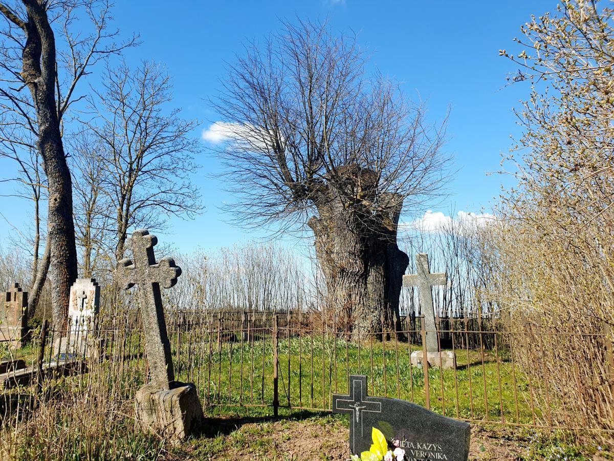 Dvarininkų Chodakauskų kapavietė Vytartų kapinėse