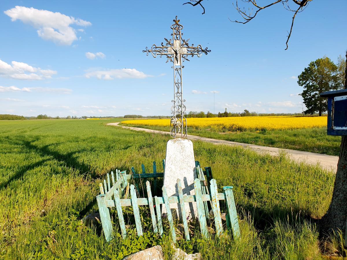 Kryžius prie buvusios Felicijos ir Antano Karpavičių sodybos Rojūnų kaime