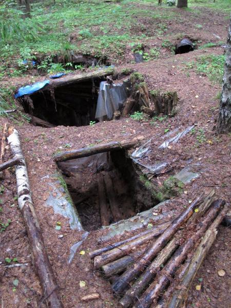 Partizanų bunkeris Žaliojoje girioje, netoli Druciškių kaimo